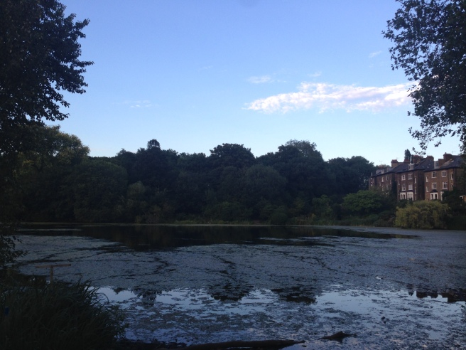 Hamptead Heath Ponds